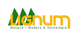 Lignum-logo